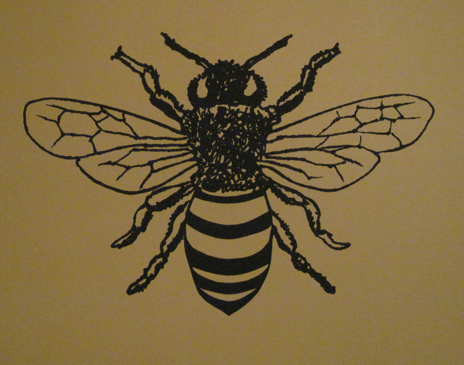 Finest Bee Prints! – Jesse Graves LQ58